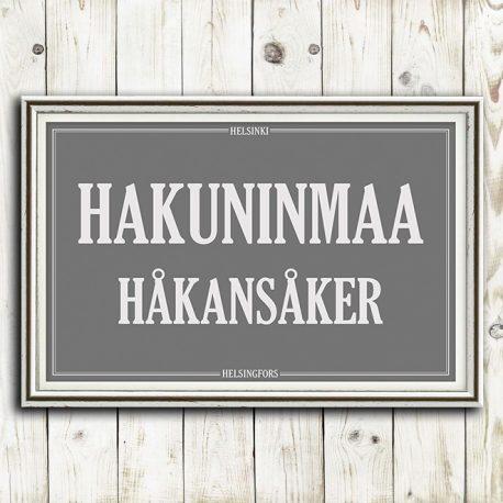 STADI-HELSINKI-KAUPUNGINOSA-HAKUNINMAA-1