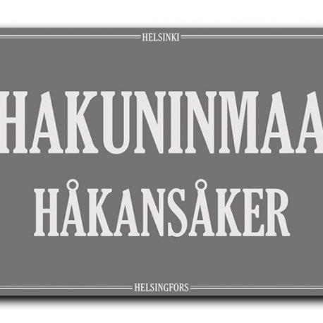 STADI-HELSINKI-KAUPUNGINOSA-HAKUNINMAA-2