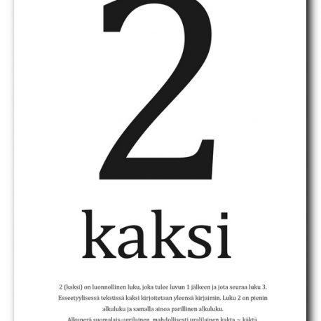 SISUSTUSJULISTE-2-KAKSI-2