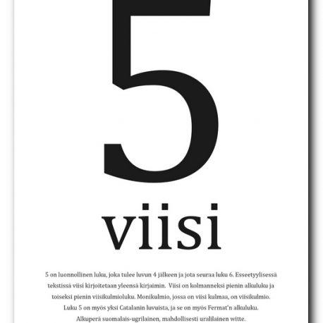 SISUSTUSJULISTE-5-VIISI-2